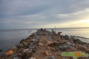 balik_kampung_nature_tour30
