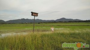 balik_kampung_nature_tour35