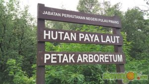 balik_kampung_nature_tour42