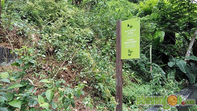 the_habitat_penang_hill14